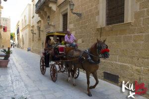 Malta - tradycyjny transport konny